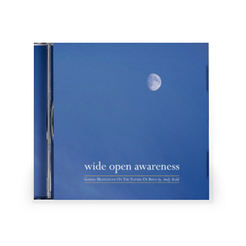 Cover of Wide Open Awareness CD