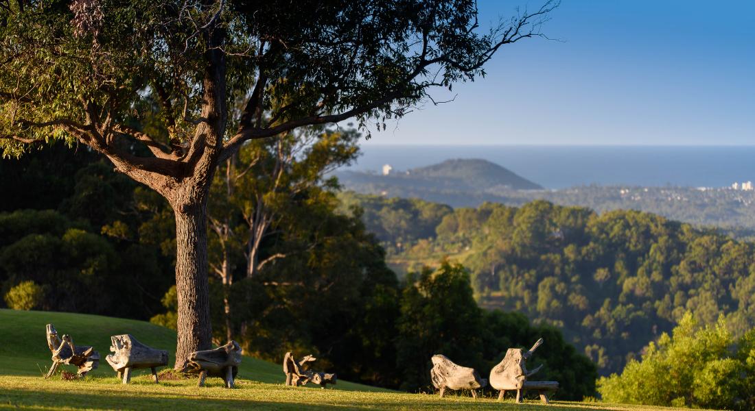 Gwinganna's famous hillside overlooking Tallebudgera Valley